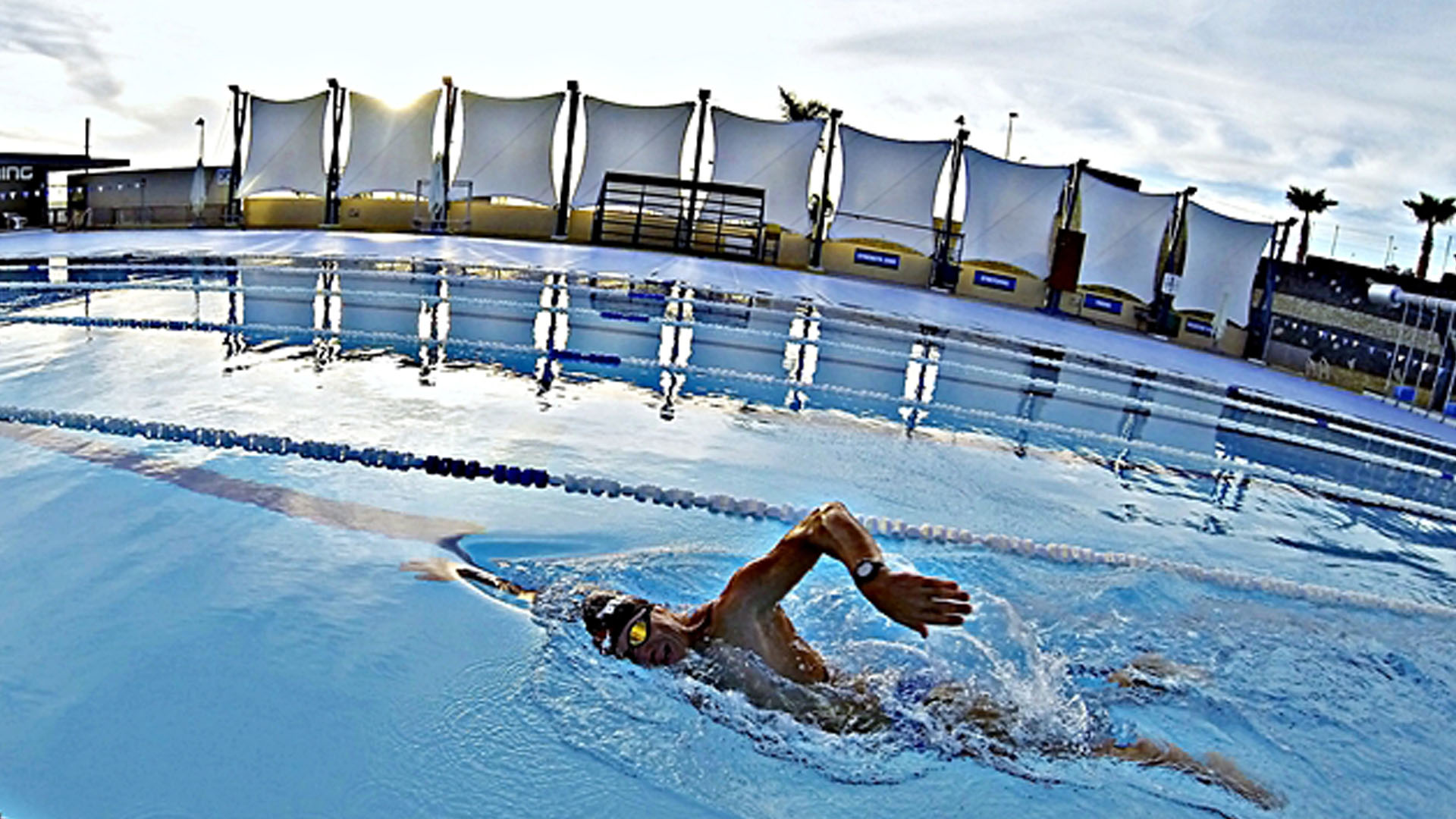 swimmer in the 50 meter pool