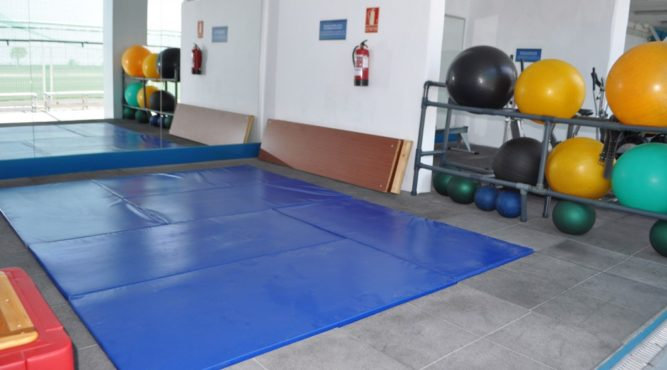 The gmnastic mats for core exercises