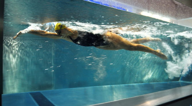 Athletes accelerate in the canal and analyze their swimming