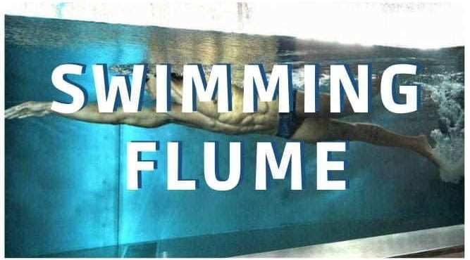 swimming flume endless pool swim camps technique analysis